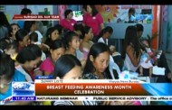 Breast Feeding Awareness Month Celebration