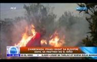 Zamboanga, pinag-iingat sa bushfire dahil sa pagtindi ng El Niño