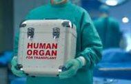 Organ donor, kailangan para makapagligtas ng maraming buhay ayon sa DOH