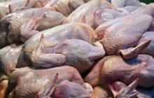 Walang pagtaas sa presyo ng mga manok sa kabila ng Bird flu outbreak-Malacañang