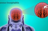 Budget para sa bakuna laban sa Japanese encephalitis, inilaan ng DOH
