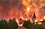 Pagkalat pa ng wildfire sa Northern California, pinangangambahan