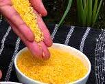 Golden rice advocates, humihiling na makapagtanim nito…samantala, benepisyong pangkalusugan ng Golden Rice, binigyang -diin sa ginanap na Public Consultation