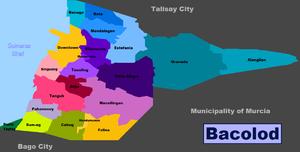 Kaso ng dengue sa Bacolod city, tumaas ng 121 porsyento sa unang limang linggo ng 2019