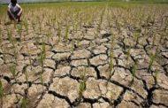 Pinsala sa agrikultura dahil sa El Niño, pumalo na sa mahigit 5 bilyong piso