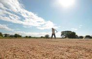 Dept. of Agriculture: Mga magsasaka at mangingisda sa malalayong lugar, makatatanggap rin ng tulong