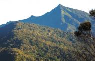 US inilunsad ang isang bagong biodiversity project sa Pilipinas