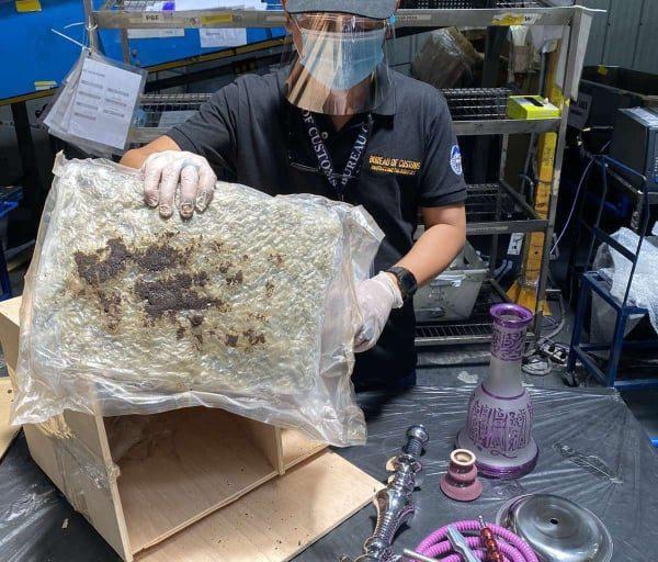 Claimant ng P 1.5 milyong halaga ng Kush Marijuana shipment, arestado