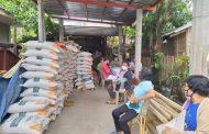 DA-PhilRice, nagsimula nang mamahagi ng libreng certified inbred seeds para sa 2021