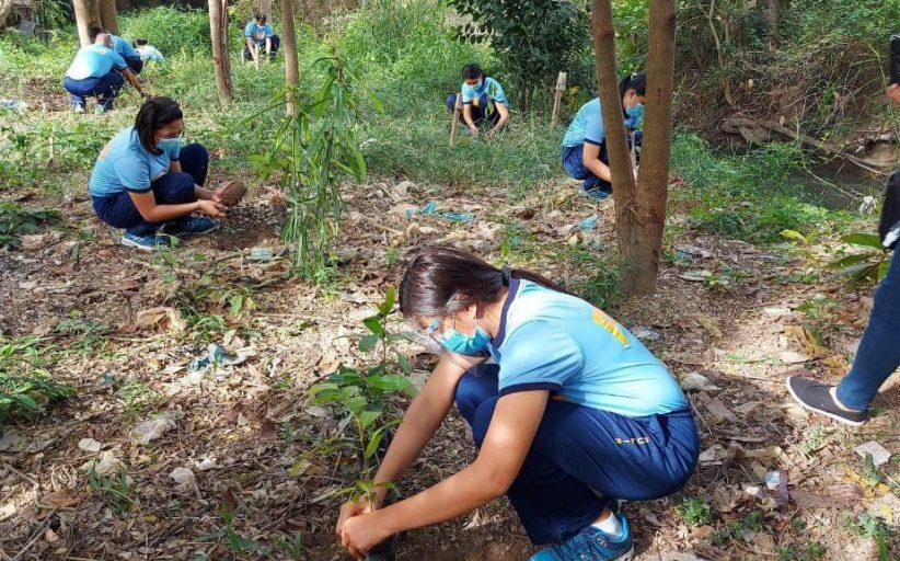 Second mobile force company, patuloy sa pagsasagawa ng tree planting activity