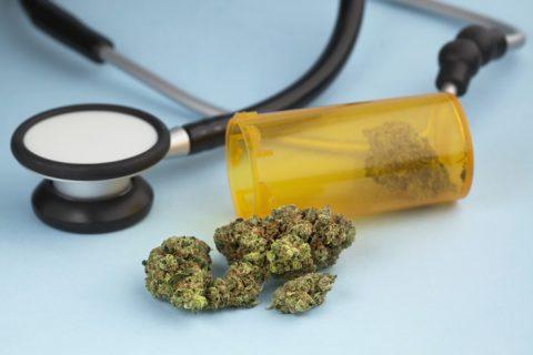 Pagli-legalize ng marijuana, gagamitin lang umanong front ng mga sindikato ng droga