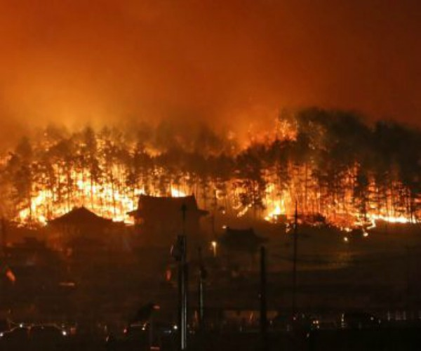 1 Patay, 11 sugatan sa Forest Fire sa South Korea