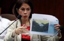Malakanyang nagpahatid ng pakikiramay sa pagpanaw ni dating DENR Secretary Gina Lopez